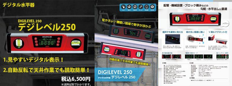 デジレベル250